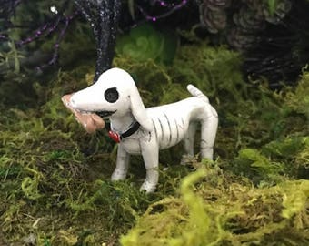 Miniature Dog / Puppy Skeleton