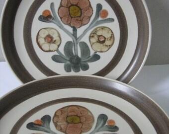 Six Denby/Langley lunch plates Mayflower design