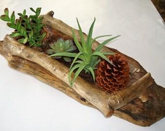 Captivating Driftwood Table Top Planter, Driftwood Centerpiece, Rustic Driftwood Home  Decor, Handmade Driftwood,