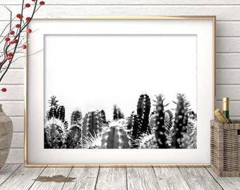 Cactus Print - Black And White Photo, Digital Download, Living room Wall Art, Succulent Print, Large Printable, Minimalist Art, Grey Decor