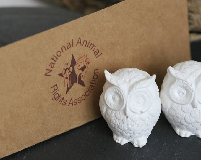 RESERVED for Jan | Concrete Owl Figurine | Concrete Home Accessories | Concrete Homeware | Fundraising