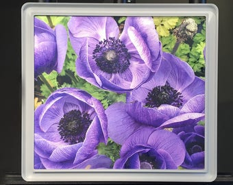 Purple Flowers in Acrylic Frame