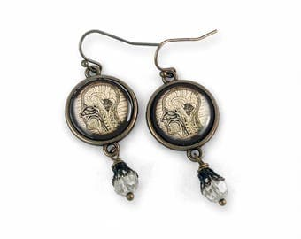 Human Nervous System Earrings
