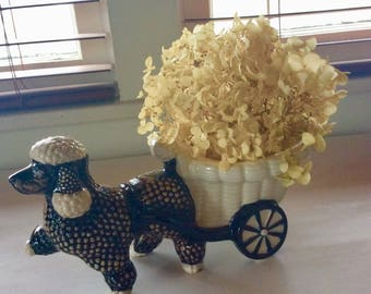 French Poodle Planter