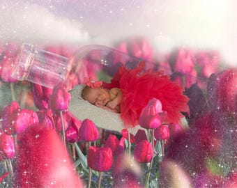 Digital Newborn Photo Prop in Flowers