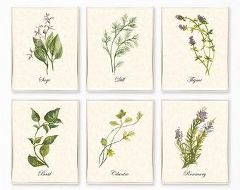 Botanical Print, Botanical Print Sets, Herb Prints, Herb Printables, Botanical Wall Art, Botanical Decor, Herb Wall Art, Botanical Set of 6