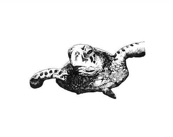Turtle print - mounted