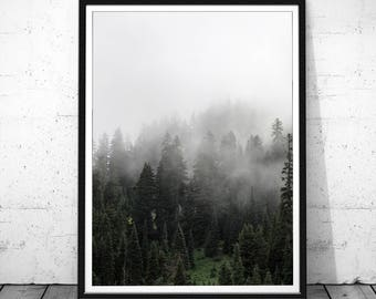 Forest Print, Forest Poster, Digital Print, Landscape Print, Forest Wall Art, Nature Photography Prints, Scandinavian Art, Fog Forest,