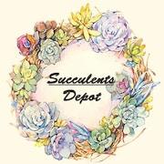 SucculentsDepot