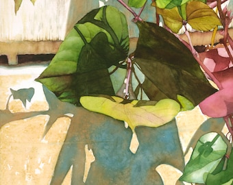 Farm Leaf, watercolor painting, art print giclee 11x14 contemporary design home decor, greens, Phyllis Nathans