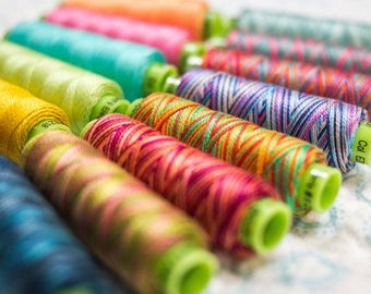 Eleganza™, Sue Spargo Thread by WonderFil™, Perle Cotton in Saturated and Variegated Colors, one roll