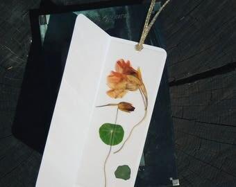Nasturtium bookmark Pressed Flower Bookmark Botanical Bookmark Laminated Bookmarks Floral Art Book Accessory gift for readers Bookworm