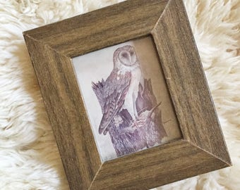 S A L E Small Vintage Owl Framed Print // Forest Decor