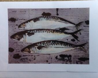 Mackerel on newspaper
