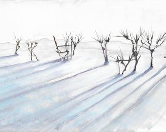 Snow in Galliano (Mugello, Tuscany)