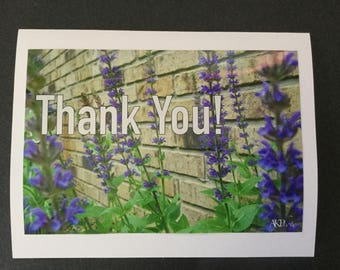 Nature Photo Card - Purple Flowers TY