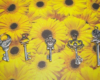 set of 5 key charms silver 2.8 to 4.3 cm # 4
