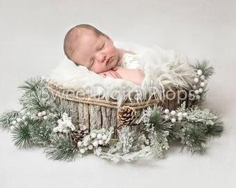Newborn Digital Backdrop, Christmas Backdrop , DIGITAL BACKDROP/BACKGROUND