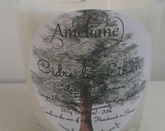 Jar candle scented the Lebanon Cedar * gift idea for him *.