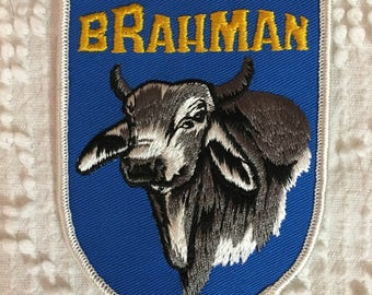 BRAHMAN Cattle Patch Detailed Stitching MINT Condition Agriculture Farming Cow