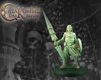 Figurine héros : Sir Flavien le paladin