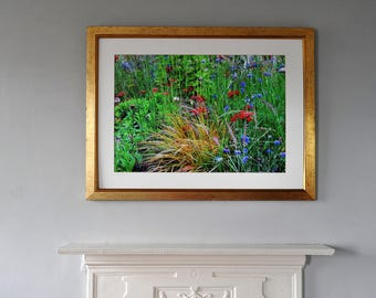 Wildflowers and long grasses, May flowers, English countryside, photo print, Photography, Picturesque print, England,