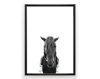 Horse Print, Nursery Wall Art, Woodland Nursery Decor, Nursery Animal Wall Art, Horse Print Wall Art, Horse Art Print, Nursery Art Print