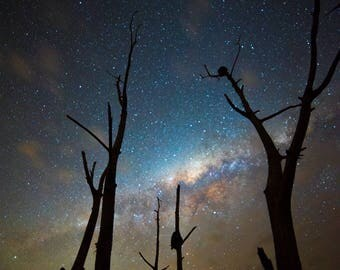 Queensland Night Sky