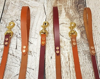 Classic Leather Leash For Dogs - 5 feets