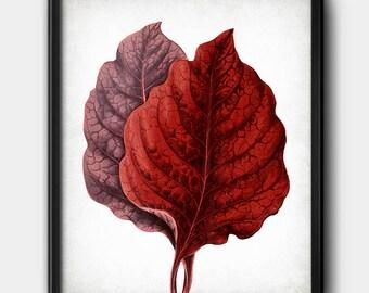 Red leaves · Botanical · Nature · Instant Download · Digital file #164