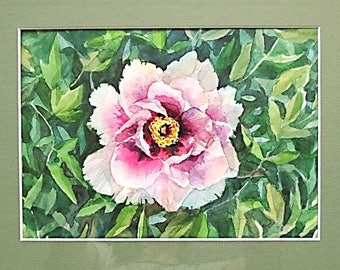 Watercolor peony painting peonies watercolor peony watercolor peonies white peony cheap painting cheap home decor wall decor cheap present
