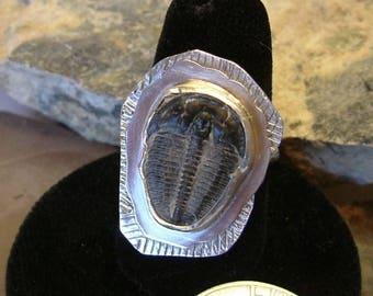 Trilobite Fossil Ring Sterling Silver OOAK Utah Large Boho Size 9 1/4 Statement Ring   134G