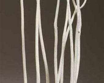 Mitsumata Branches - Bleached | White Branches | Dried Branches | Decorative Branches