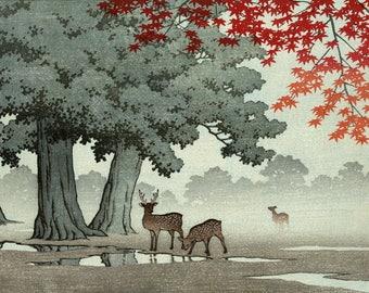 "Japanese Art Print ""Nara Park"" by Kawase Hasui, woodblock print reproduction, Asian art, landscape, Autumn, leaves, Deer, park"