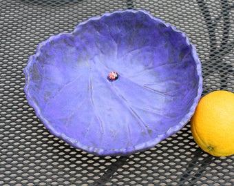 Rhubarb leaf and a ladybug bowl
