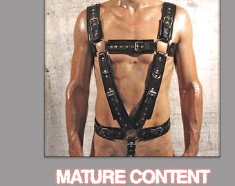 Full body harness CLASSIC-2