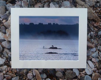 Misty Day in the bay - devon photography - sea view photography - torbay photography