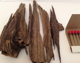 Agarwood from the Hills of Bandarban Bangladesh