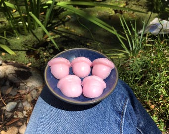5 Rose Scented Soy Wax Melt Acorns