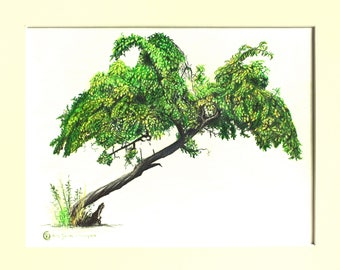 realistic tree drawing tree pencil art tree art drawing tree bending art