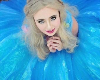 2015 Cinderella Costume