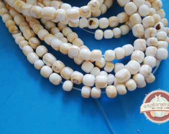 20 round white shells ethnic 5mm