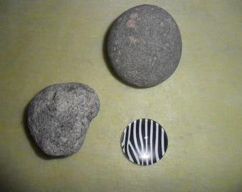 black and white Zebra print glass cabochon 16 mm round