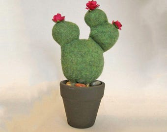 Pretty Prickly Pear Cactus