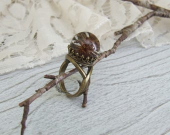 Nature crowned ring * Woods * ball resin inclusion of a mini pinecone - hand made