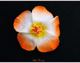 White hair clip ombre orange hibiscus pinup hair flower
