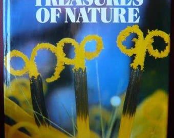 Hidden Treasure of Nature