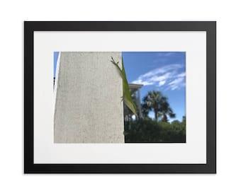 Framed Lizard Print