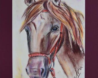Horse head crayon