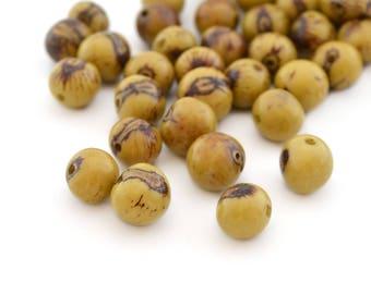 10 light green round 6-10mm Acai seeds beads